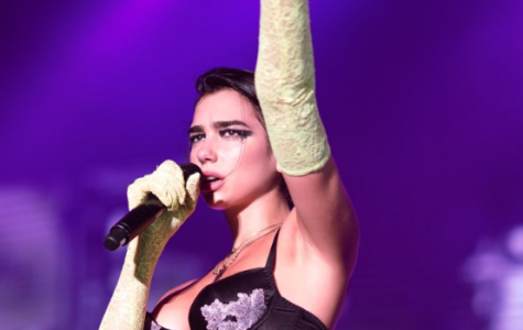 Dua Lipa fans forcibly removed by security at concert