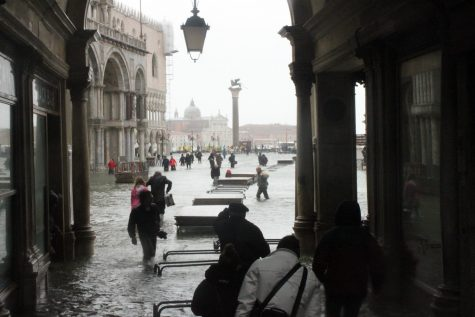 A Wake Up Call to the World From Venice